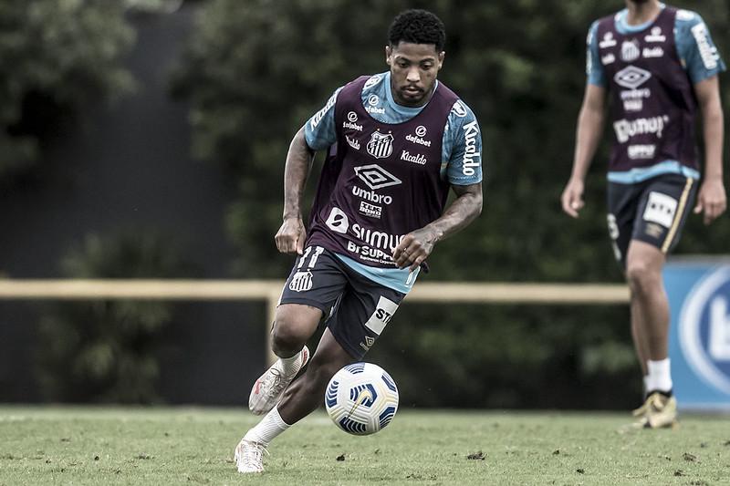 Atacante do Peixe revelou ter passado por cirurgia nas últimas semanas. Foto: Ivan Storti/Santos FC