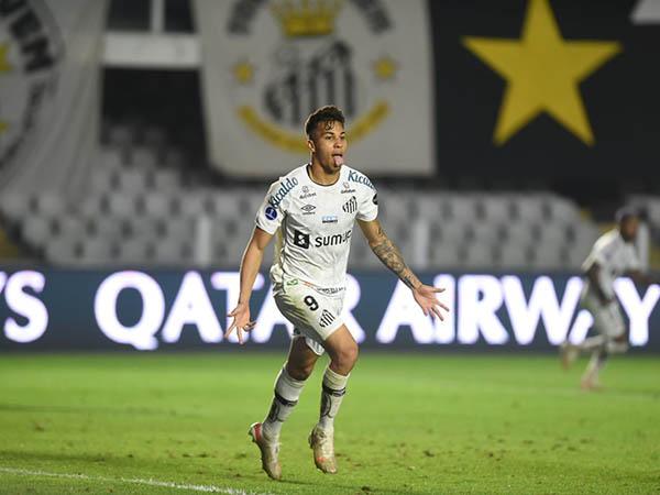 Peixe vive seca de gols e marcou apenas uma vez nos últimos cinco jogos. Foto: Ivan Storti/Santos FC