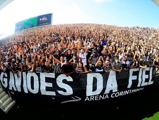 Estádios paulistas poderão ter até 30% de lotação a partir do próximo mês. Foto: Facebook/Divulgação