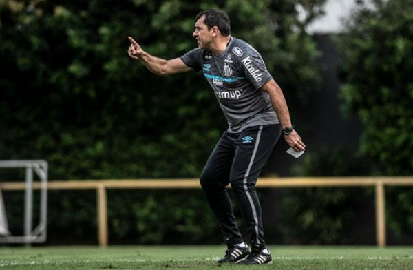 Fábio Carille comanda treino do Peixe no CT Rei Pelé. Foto: Divulgação/Santos