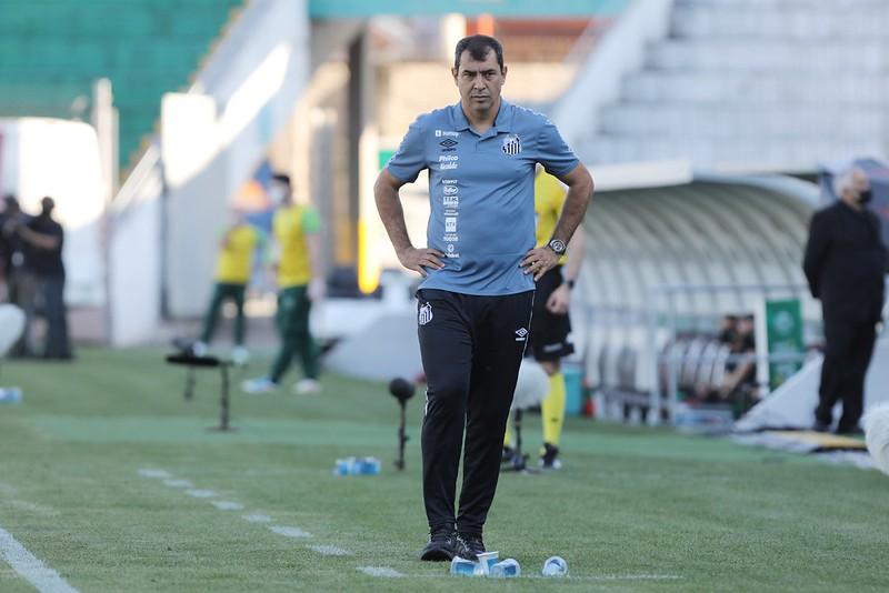 Fábio Carille, técnico do Santos. Foto: Ivan Storti/Santos FC