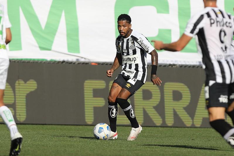 Peixe é hoje o 16º colocado na tabela com apenas  24 pontos. Foto: Ivan Storti/Santos FC