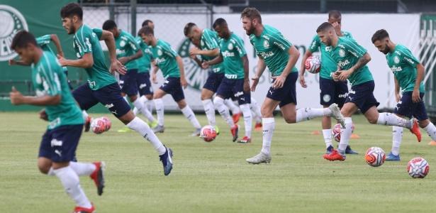 Palmeiras tem 35 jogadores no elenco, além de Willian, que está machucado. Foto: Cesar Greco/Ag. Palmeiras/Divulgação/Via UOL