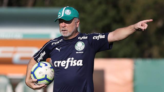 Técnico assumiu o Palmeiras há menos de uma semana. Foto: Divulgação/Palmeiras