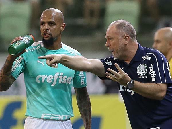 Volante palmeirense será desfalque por duas partidas. Foto: Cesar Greco/Ag Palmeiras/Divulgação