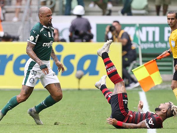 Volante alviverde destacou a amizade de sua família com Gabigol. Foto: Cesar Grecco/Ag Palmeiras/Divulgação