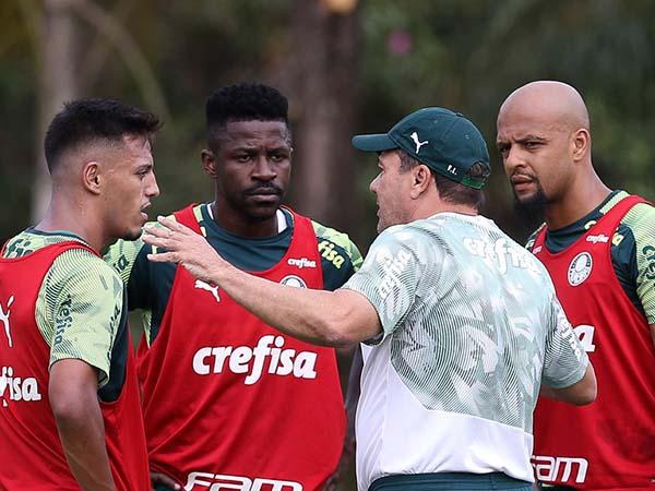 Luxemburgo apresentará novidades no time titular do Verdão. Foto: Cesar Graco/Palmeiras