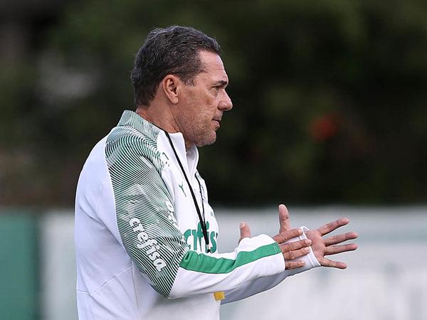 Treinador do Palmeiras destacou que aceitaria um convite da CBF caso Tite deixasse o comando verde e amarelo. Foto: Cesar Greco