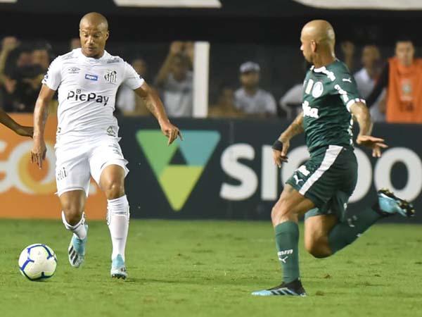 Peixe não vence há dois jogos, enquanto o Verdão vem de duas vitórias seguidas. Foto: Ivan Storti/Santos FC