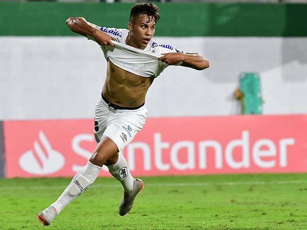 Revelado no clube, atacante marcou seu primeiro gol pelo profissional do Peixe. Foto: Staff Images