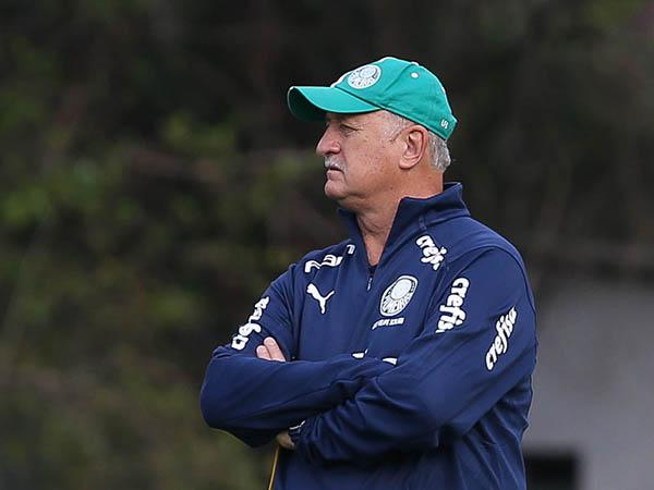Contratação do treinador brasileiro não agrada boa parte da torcida do clube chileno. Foto: Cesar Greco/Ag Palmeiras/Divulgação