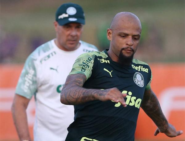 Felipe Melo, zagueiro do Palmeiras. Foto: Cesar Greco/Ag. Palmeiras