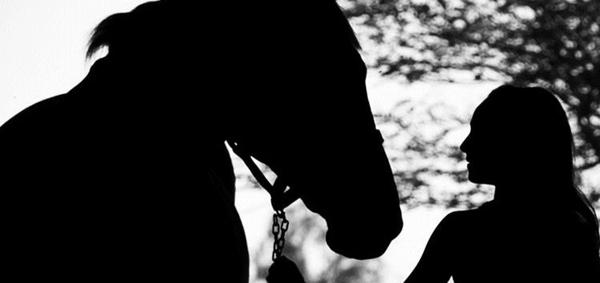 Contato com animais pode contribuir na melhora de pacientes. Foto: Divugação