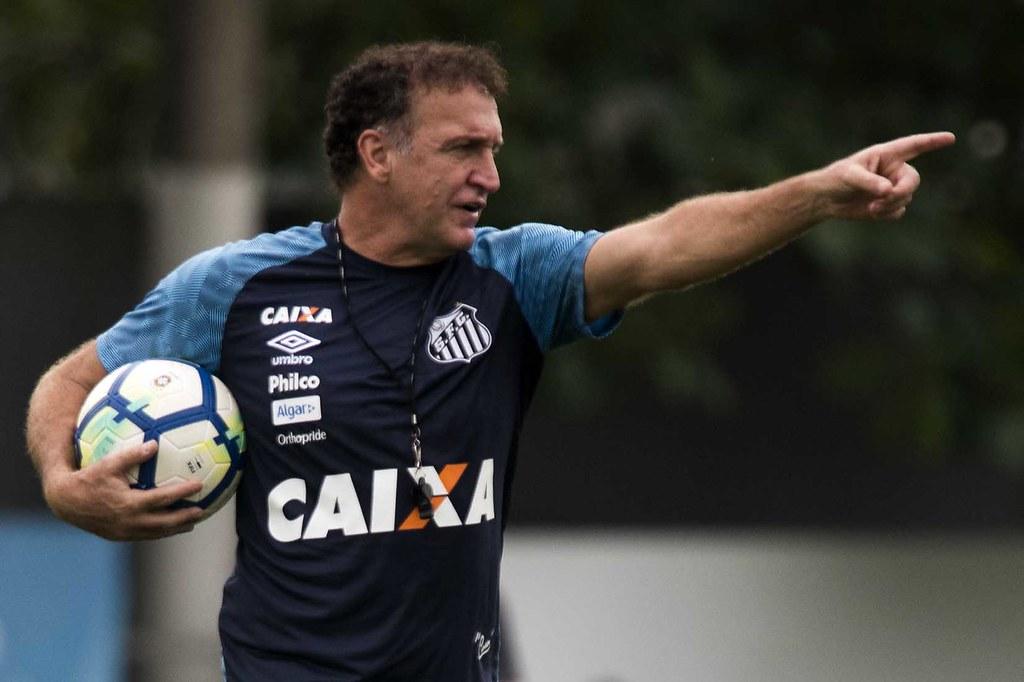 Equipe comandada por Cuca faz boa campanha na Libertadores. Foto: Ivan Storti/Santos F.C
