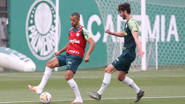 Elenco trabalhou nesta semana na Academia de Futebol. Foto: Cesar Greco/Palmeiras