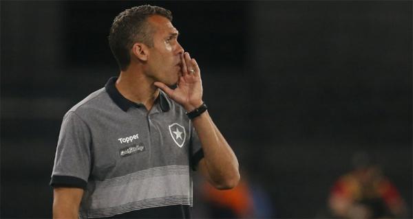 Equipe carioca quebrou a invencibilidade do Palmeiras no Engenhão. Foto: Vitor Silva/Botafogo