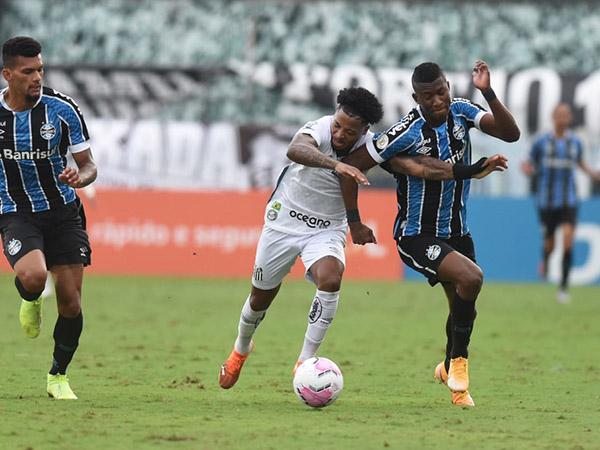 Peixe e Tricolor Gaúcho abrem as quartas de final da Libertadores na Arena. Foto: Ivan Storti/Santos FC