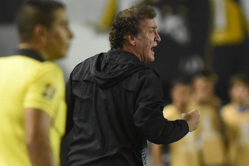 Contrato de Cuca com o Peixe se encerra em fevereiro de 2021. Foto: Ivan Storti/Santos FC