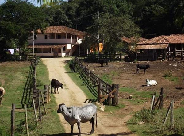 Produção de alimentos no Brasil
