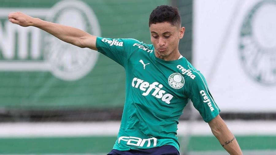 Diogo Barbosa superou problemas físicos e hoje está à frente de Victor Luis. Foto: Cesar Greco/Ag.Palmeiras/Divulgação