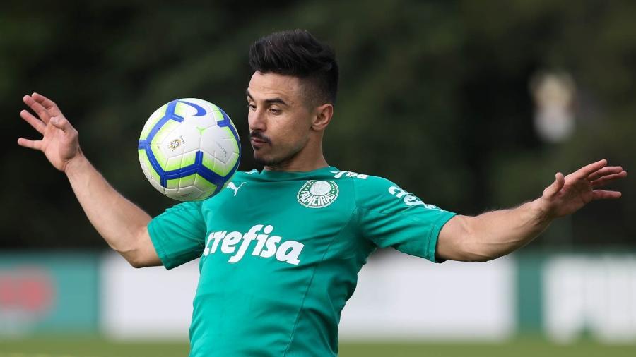 Willian já voltou a treinar no campo com o elenco do Palmeiras após cirurgia. Foto: Cesar Greco/Ag.Palmeiras/Divulgação