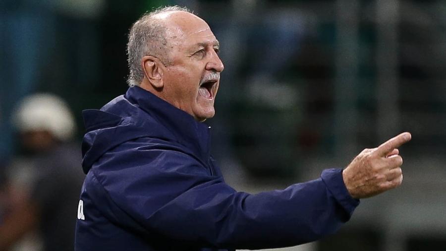 Treinador comparou o estilo de jogo dos dois times. Foto: Cesar Greco/Ag.Palmeiras