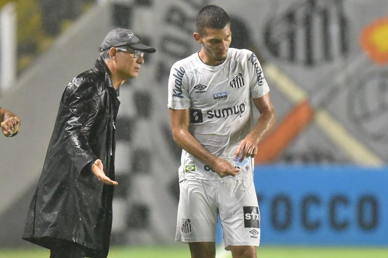 Treinador do Peixe disse que jogadores da base estão adquirindo experiência no Paulista. Foto: Ivan Storti/Santos FC