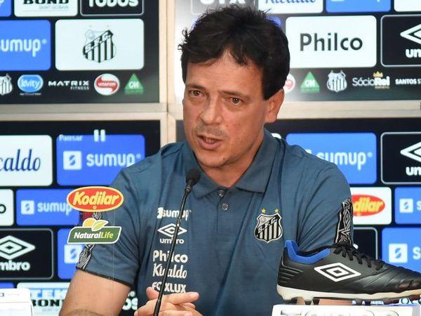 Novo treinador do Peixe disse que o time precisa de poucos e bons refoços. Foto: Ivan Storti/Santos FC