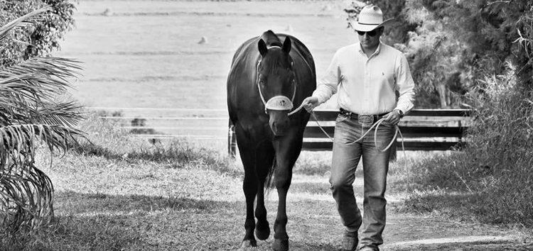Cavalo Paixão E Poesia Notícias Terceiro Tempo
