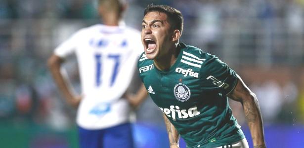 Palmeiras é o campeão virtual do nacional e, apesar da frustração com a queda na semifinal da Libertadores,  deve, sim, festejar muito a conquista da maior competição do futebol brasileiro